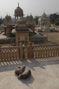 Kings Tomb, Jaipur, Andy Craggs 2009