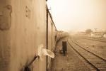 Journey to Jaipur, 'Rajasthan' Steven Lee 2009