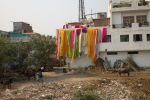 Drying sarees, Delhi suburbs, Steven Lee 2009