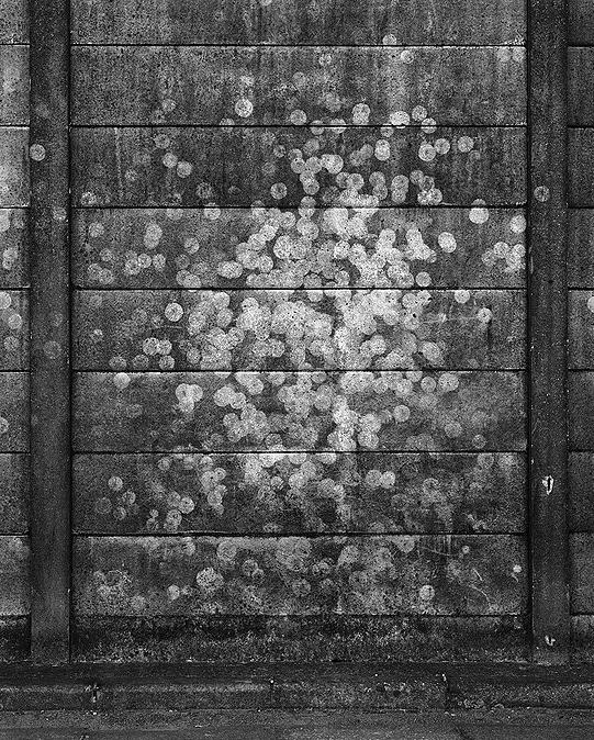 OKADA SUSUMU   白い痕跡2